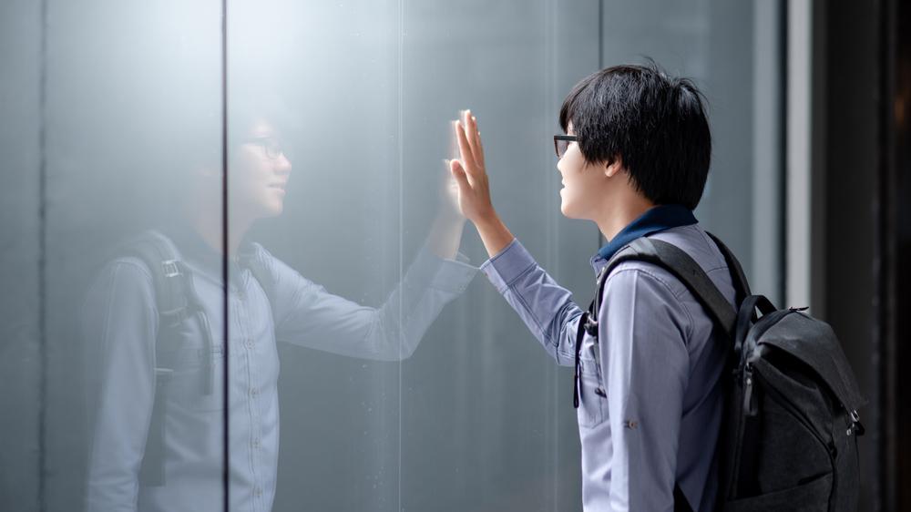 Mirroring Awareness and Choosing Emotion